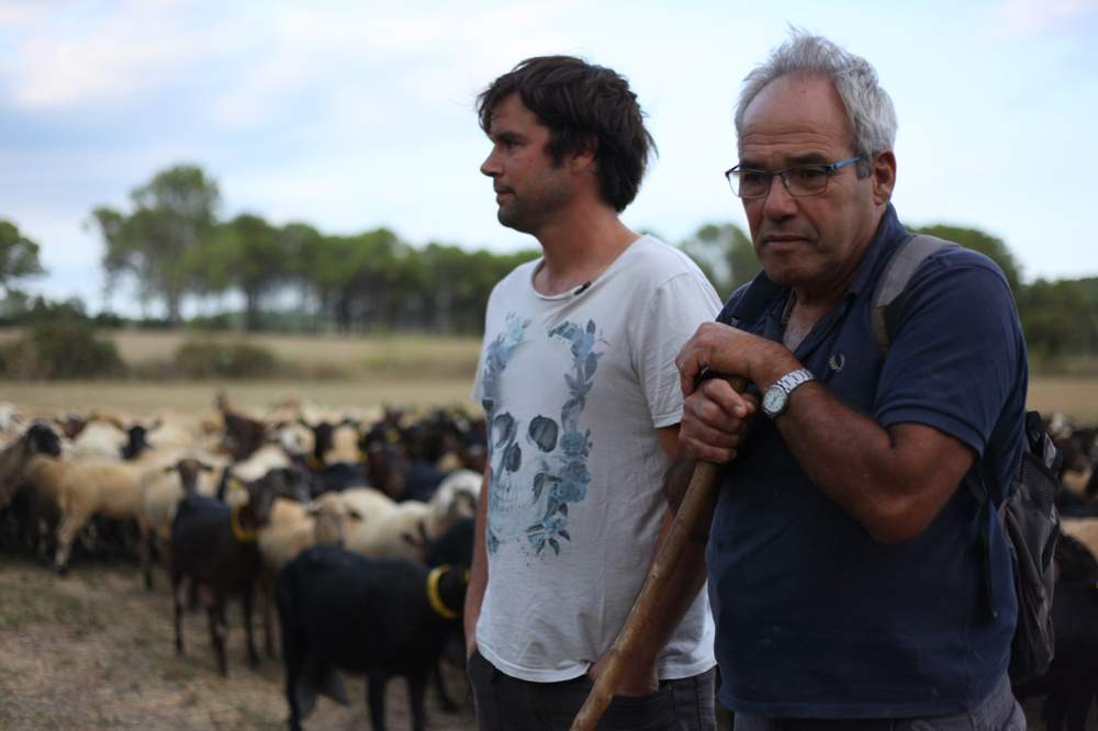 Catalan farmers Pau Figueras Mundo (L), 36, and his father Xavier Figueras Costa, 62, watch over their sheep and goats in a field, in Jafre, in the northeast region of Girona, Spain, August 9, 2017. Thomson Reuters Foundation\/Lin Taylor