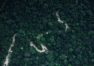 Uncontacted tribes at risk amid 'worrying' surge in Amazon deforestation