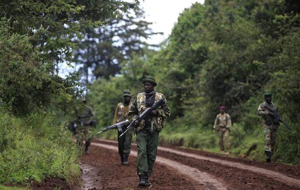 Members of the Kenyan Wildlife Service (KWS) and Kenya Forest Service (KFS) patrol the forest in an exercise during a training course held by British Army Paratroopers against poaching and logging near Nanyuki town, some 200 km (124 miles) north of the capital Nairobi, Dec. 5, 2013. REUTERS/Andreea Campeanu