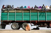 Refugees rest on, under and next to a truck in Maiduguri, Nigeria