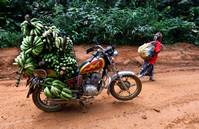 Food prices soar in Cameroon's cities as water runs short