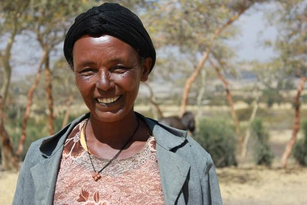 Ethiopian farmer Temegnush Dhabi worked with researchers to test drought-tolerant chickpea varieties and now grows her preferred variety, 'areti' (which means not afraid of drought), on over half her farmland. ICRISAT/Alina Paul-Bossuet