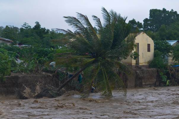 A coconut tree falls and is washed away by rains from Hurricane Sandy, as a river swells to dangerous levels and threatens homes along the bank, in Port-au-Prince, Haiti, on October 26, 2012. REUTERS/Swoan Parker