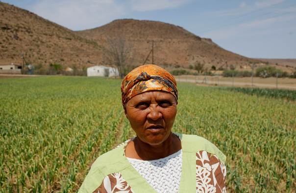 Garlic farmer Molly Nikelo walks through her fields in Nieu-Bethesda in the Karoo, South Africa, on October 11, 2013. REUTERS/Mike Hutchings