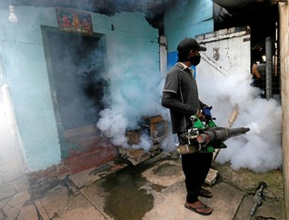Deaths rising as Sri Lanka struggles with worst-ever outbreak of dengue