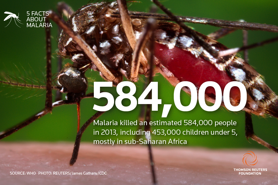 what is malaria knowing more on The risk of malaria for travelers varies of primaquine without knowing whether the traveler is take more responsibility and receive.