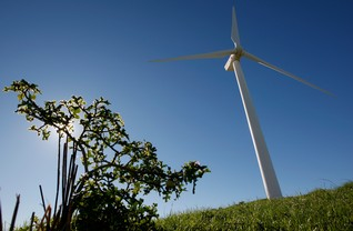 As land conflicts rise, clean energy investors face financial risks