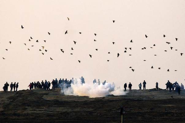 Palestinian demonstrators protest near the Israeli border fence with Gaza as the Israeli army shoots tear gas, January 3, 2014. REUTERS/Amir Cohen