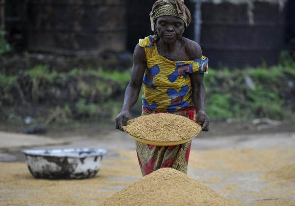 A woman works in a rice mill in Aliade community in the Gwer local government area of the central state of Benue in Nigeria, October 4, 2012. Picture taken October 4, 2012. REUTERS/Afolabi Sotunde