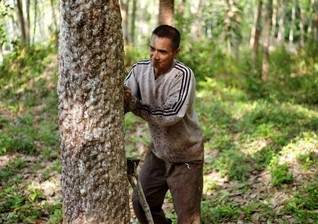 INTERVIEW-Thai minister vows to make resolving land claims in forests 'top priority'