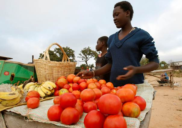 A Zimbabwean trader sells fruit and vegetables at a rural marketplace outside the capital Harare, April 5, 2008. REUTERS/Mike Hutchings