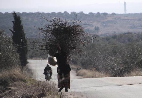A woman carries tree branches, to be used for heating, along a street at Kansafra village in Jabal al-Zawiya in Idlib, Syria, January 6, 2014. REUTERS/Fadi Mashan