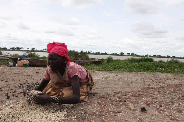 A South Sudanese woman, displaced by the fighting in Malakal, gathers grains to eat after they were left behind by an offloading truck on May 29, 2014. REUTERS/Andreea Campeanu