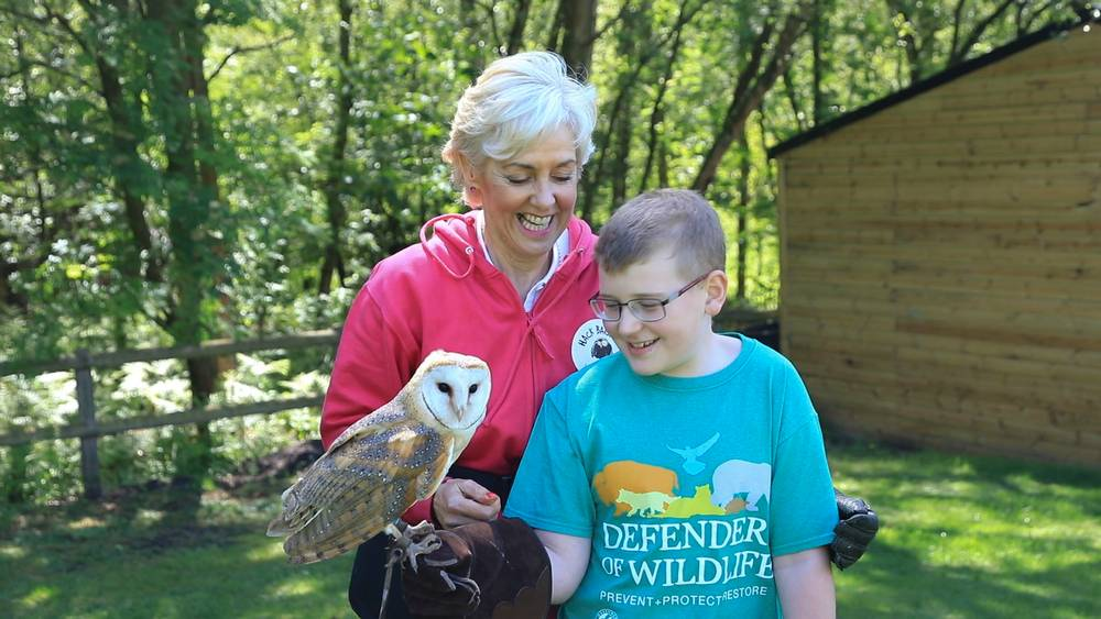 FEATURE-Wise and serene, owl power swoops into animal therapy in England