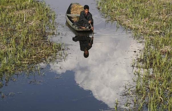 A Kashmiri boy paddles his boat in the waters of Anchar Lake on a sunny day in Srinagar, India, April 1, 2014. REUTERS/Danish Ismail