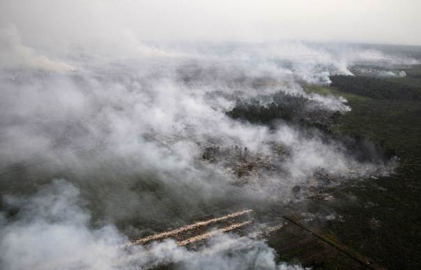 An aerial view of burning lands in Palalawan district in Riau province June 21, 2013. REUTERS/Fikih Nauli