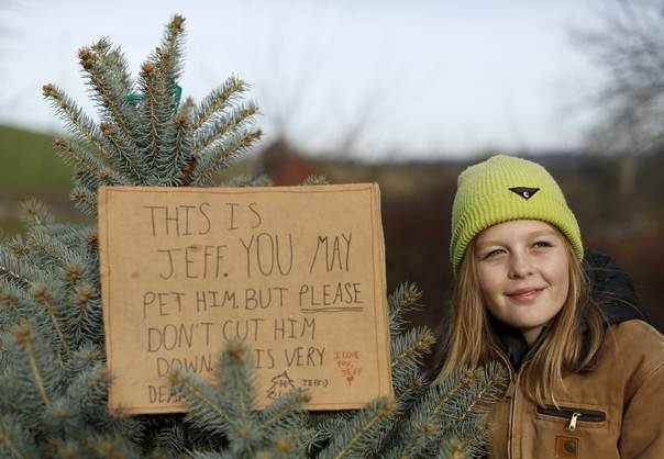 Charlotte Wolff Is Seen With Pet Christmas Tree At Snickers Gap  - Christmas Tree Farm In Virginia