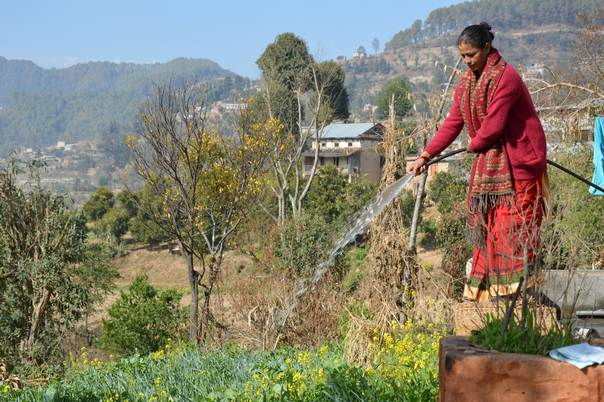 A farmer waters her vegetable field in Panityanki, a mountain village in Nepal's Kavrepalanchowk district, about 35 kilometers from Kathmandu. THOMSON REUTERS FOUNDATION/Saleem Shaikh
