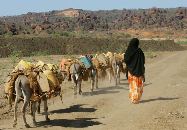 A Kenyan woman walks with her donkeys carrying water after trekking 6 km (3.7 miles) to the only well with water in the Kenyan town of El Wak, 1,530 km (951 miles) from the capital Nairobi, December 19, 2005. REUTERS/Antony Njuguna