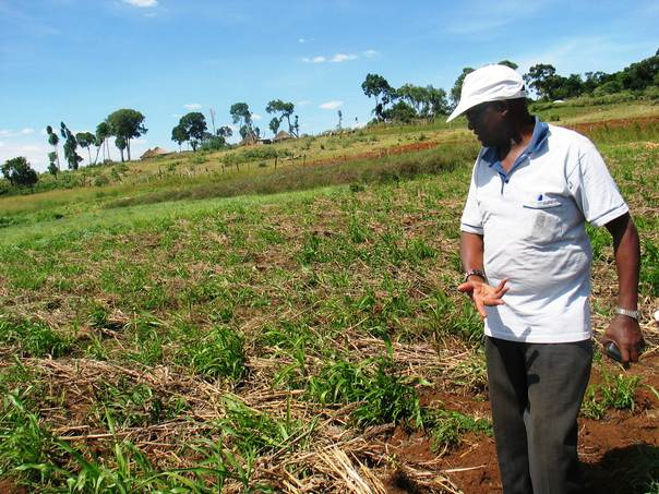Ambrose Nzambi, a research officer from Kenya's agricultural research institute, shows an example of conservation farming. THOMSON REUTERS FOUNDATION/Pius Sawa