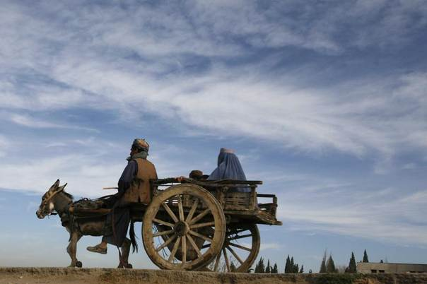 A man rides a cart led by a donkey through the outskirts of Quetta in Pakistan, Nov. 23, 2011. REUTERS/Naseer Ahmed