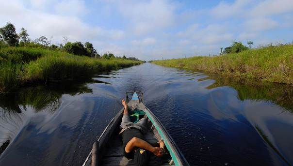 A villager in a wooden boat passes through drainage canals, which are supposed to be developed for farming, in a peat area in Mangtangai in central Kalimantan, Indonesia, on April 26, 2009. REUTERS/Ferry Latif