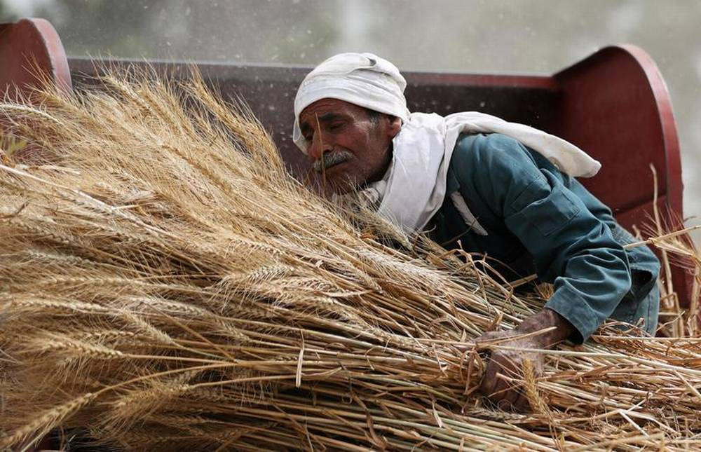 INTERVIEW-Funding injection needed to stop poor farmers' climate pain spreading
