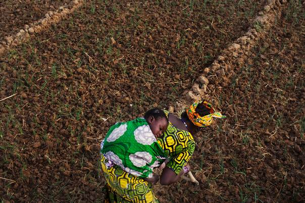 Farmer Bintou Samake plants beans while carrying her son Mahamadou on her back at a farm in Heremakono, Mali, on January 22, 2013. REUTERS/Joe Penney