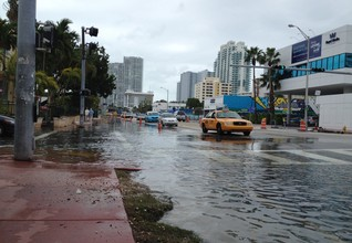 FEATURE-In Miami, battling sea level rise may mean surrendering land