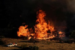 A firefighter stands in front of blazing flames as a wildfire burns in the area of Kalyvia, near Athens, Greece July 31, 2017