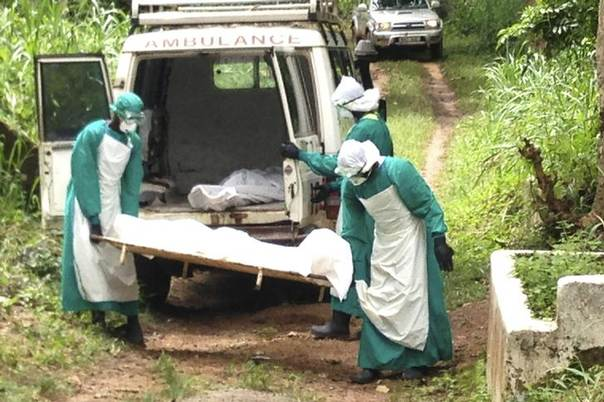Health workers carry the body of an Ebola virus victim in Kenema, Sierra Leone, June 25, 2014. REUTERS/Umaru Fofana