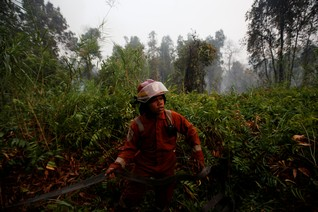 Fighting fire with... volunteers? Indonesia ramps up community fire brigades as tropical forests burn