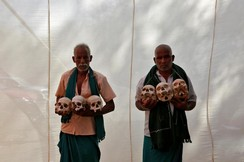 Indian farmers display skulls of farmers who committed suicide because of drought