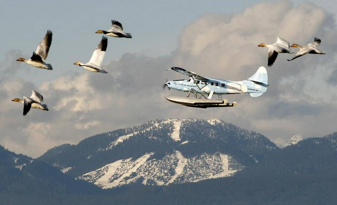 Long wait seen for electric planes despite historic first ...