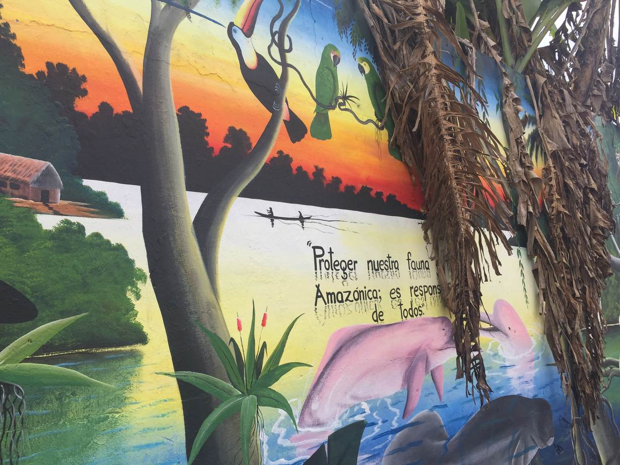 "A mural which reads ""Protect our animals. The Amazon is everyone's responsibility"" in Leticia, a jungle border town and the capital of Colombia's southern Amazonas province on September 2, 2019. Thomson Reuters Foundation / Anastasia Moloney"