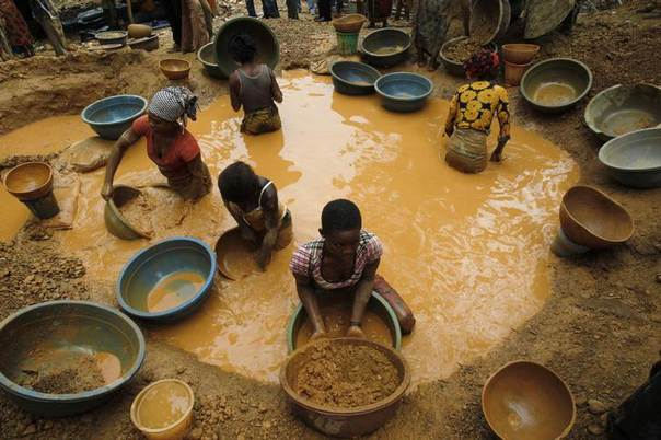 Prospectors pan for gold at a new gold mine found in a cocoa farm near the town of Bouafle in western Ivory Coast March 18, 2014. REUTERS/Luc Gnago