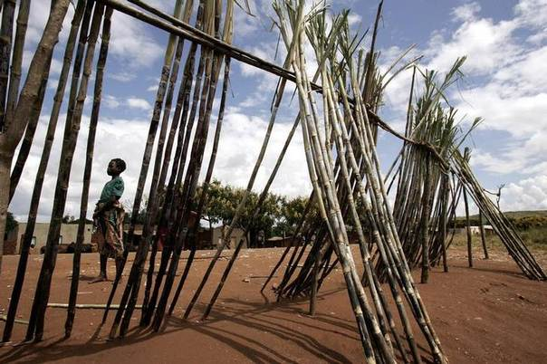 A girl stands next to her sugarcane stall in Dowa outside Lilongwe, April 20,2007. Photo taken on April 20, 2007. REUTERS/Siphiwe Sibeko