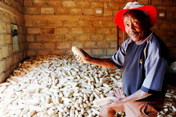 Peasant farmer Joseph Mhlanga stands over a pile of maize or corn cobs in his modest house at Malakata village, about 10 miles (16 km) from the Zambian capital Lusaka, on June 20, 2011. REUTERS/Mackson Wasamunu