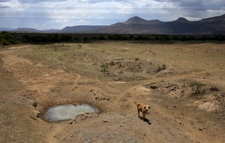Southern Africa drought