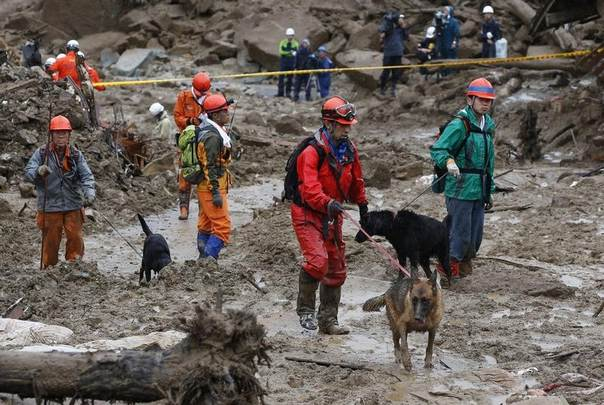 Rescue workers search for survivors with rescue dogs at a site where a landslide swept through a residential area at Asaminami ward in Hiroshima, western Japan, August 22, 2014. REUTERS/Toru Hanai