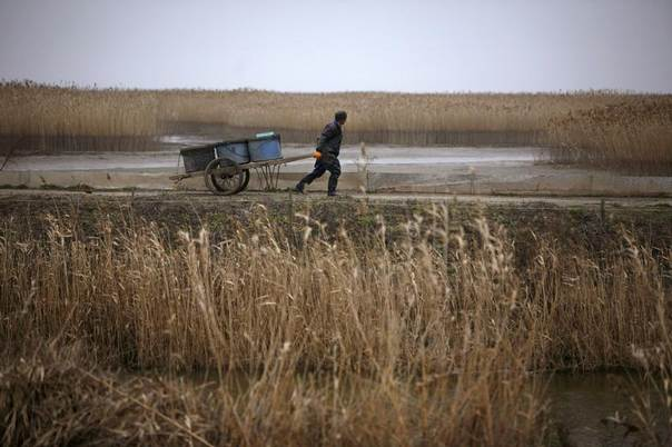 A farmer walks on a wetland area in Dongtan, where Dongtan Eco City was to be built, on Chong Ming Island, southeast of Shanghai, Jan. 21, 2008. REUTERS/ Nir Elias