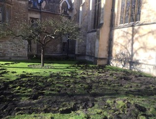 Climate protesters dig up Cambridge college's lawn
