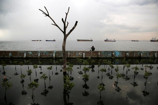 Staying safe from climate risks makes financial sense, says new commission