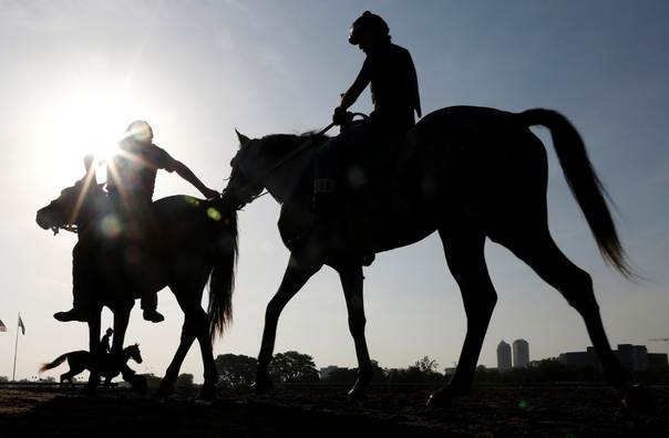 A Jockey Guides Horse In To The Racetrack At Hippodrome Presidente Remon Panama City