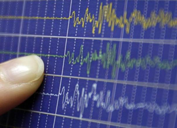 An employee of Japan's Meteorological Agency points on a graph showing ground motion waveform data observed at Matsushiro Seismological Observatory in central Japan after a major earthquake struck off the coast of the Indonesian island of Sumatra, during a photo opportunity at Japan's meterological agency in Tokyo April 7, 2010. REUTERS/Yuriko Nakao