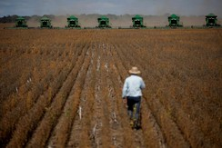 Harvesting machines can be seen working during the opening ceremony of the Grain Harvest in Caseara, Brazil