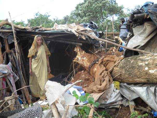 Nayana Mallick's polythene-covered, mud-walled slum home nearly missed being destroyed when cyclone Phailin uprooted an 8-metre tree nearby. THOMSON REUTERS FOUNDATION/Manipadma Jena