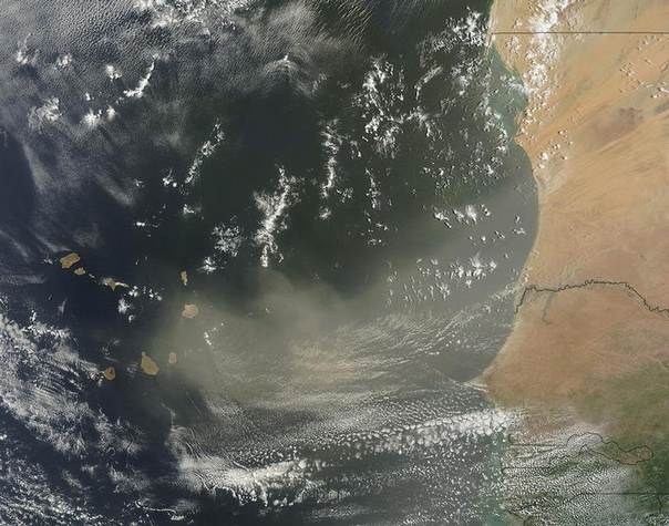 A dust storm off West Africa is shown in this July 19, 2013 NASA satellite image handout. REUTERS/NASA/Handout via Reuters