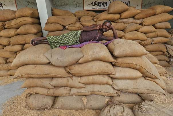 A labourer speaks on a mobile phone while lying on sacks filled with rice at the Agricultural Produce Market Committee (APMC) market yard, on the outskirts of the western Indian city of Ahmedabad July 29, 2014. REUTERS/Amit Dave