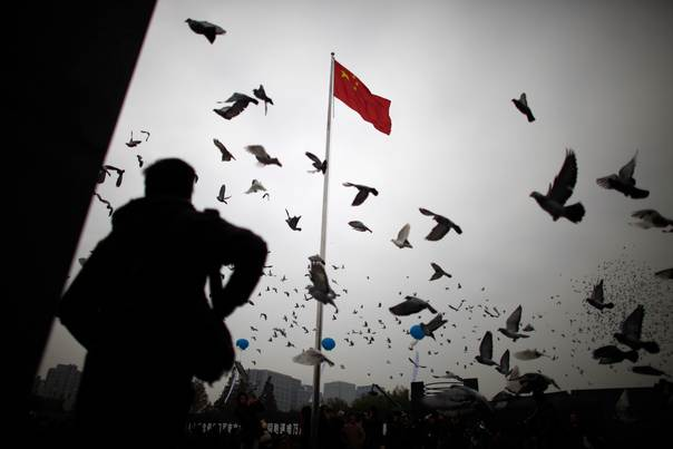 A man stands as pigeons fly during a ceremony at the Nanjing Massacre Museum, Jiangsu province, on December 13, 2012. REUTERS/Carlos Barria